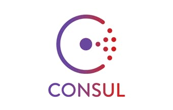 Consul for Consul database
