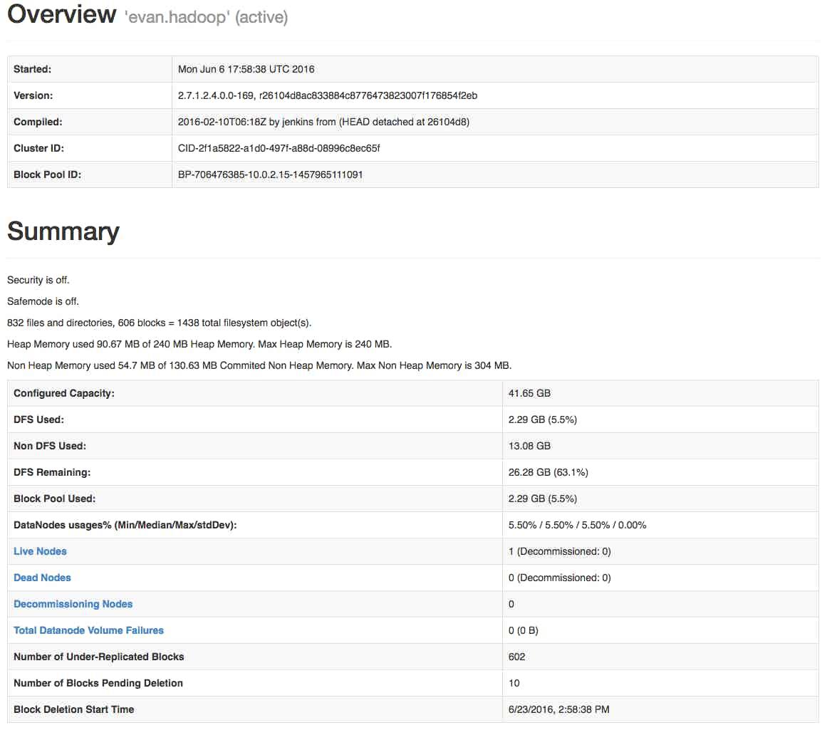 HDFS summary image